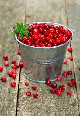 pharmeko-Lingonberry-or-Cowberry-Vaccinium-vitis-idaea-wholesale.jpg